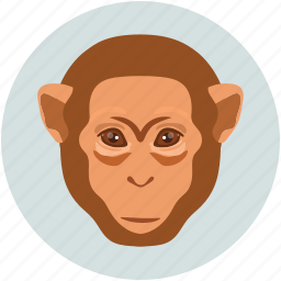 forest monkey, monkey, monkey face, smile icon