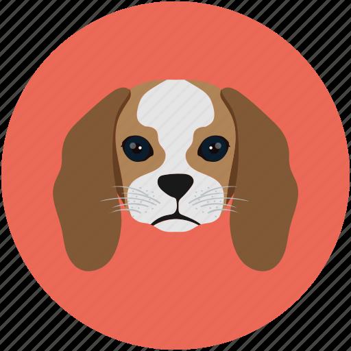 baby baloo, baby dog, dog, pet, puppy icon