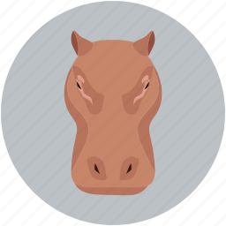 animal, animal face, rhinoceros, unicorn icon