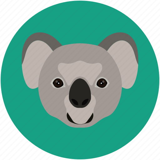animal creative, animal grid, bear, herbivore, koala icon