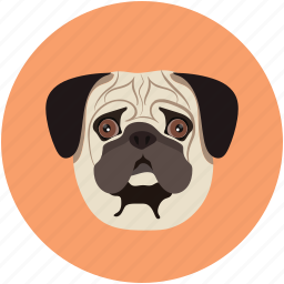 animal face, animal forest, bulldog, bulldog face, dog, pet icon