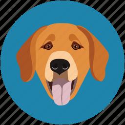 animal face, bitch, dog, dog baby, forest dog, pet icon