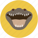 alligator, creeper, croco, crocodile, reptile, reptilian icon