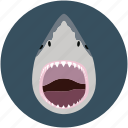 aquatic animal, fish, fish face, fishing, pisces, sea food icon