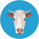 buffalo, cow, cow face, farm pet icon