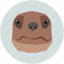 animal face, animal forest, bulldog, dog, pet icon