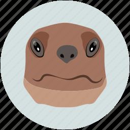 animal face, animal forest, bulldog, dog, pet icon