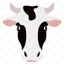 animal, cow, face, farm