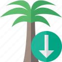 download, palmtree, travel, tree, tropical, vacation