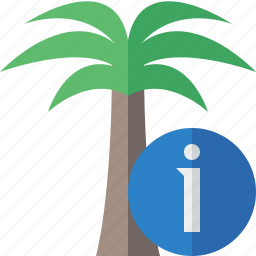 information, palmtree, travel, tree, tropical, vacation icon