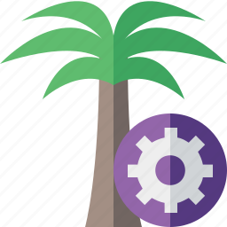 palmtree, settings, travel, tree, tropical, vacation icon