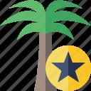 palmtree, star, travel, tree, tropical, vacation