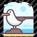 bird, gulls, seabirds, seagull, waterbird icon