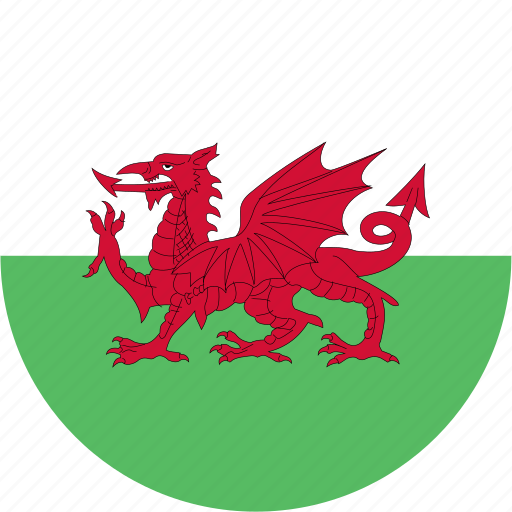 Image result for wales flag circle