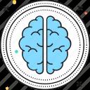 brain, human brain, intelligence, mind, organ icon