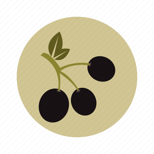 food, healthy, nature, oil, olive, plant, vegetarian icon