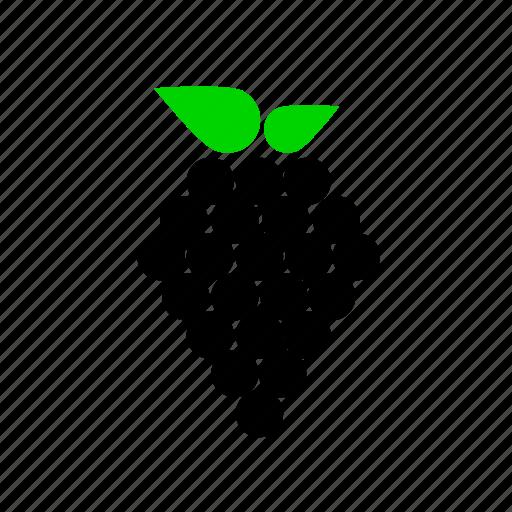 berries, berry, blackberry, fruit icon