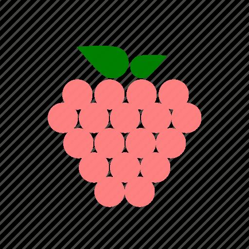 berries, berry, fruit, raspberry icon