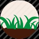 garden, gardening, grass, nature, plant, soil, tree