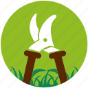 cultivator, garden, gardening, grass, nature, plant, scissors icon
