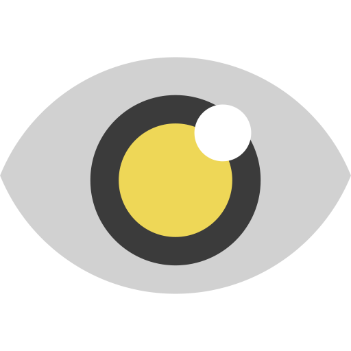 eye, look, magnifier, search, view, zoom icon