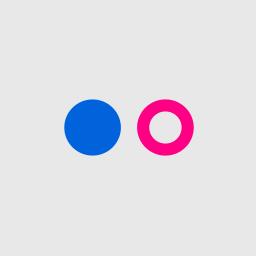 flickr, octagon icon