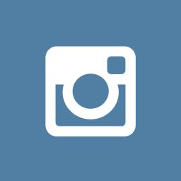 instagram, octagon icon