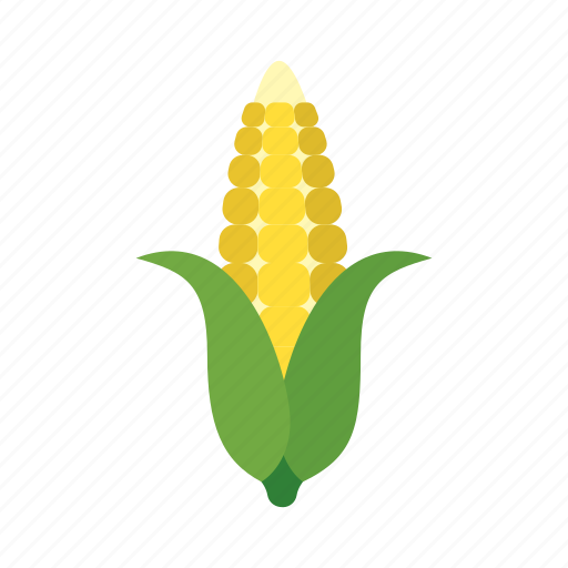 cook, corn, dish, food, kernels, vegetable, veggie icon