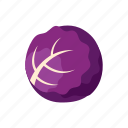 cabbage, cook, food, kitchen, purple, vegetable, veggie icon