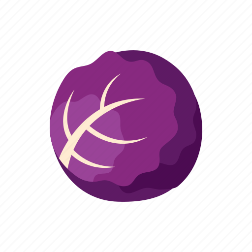 cabbage, cook, food, kitchen, purple, vegetable, veggie icon