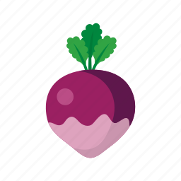 cook, food, kitchen, red, turnip, vegetable, veggie icon
