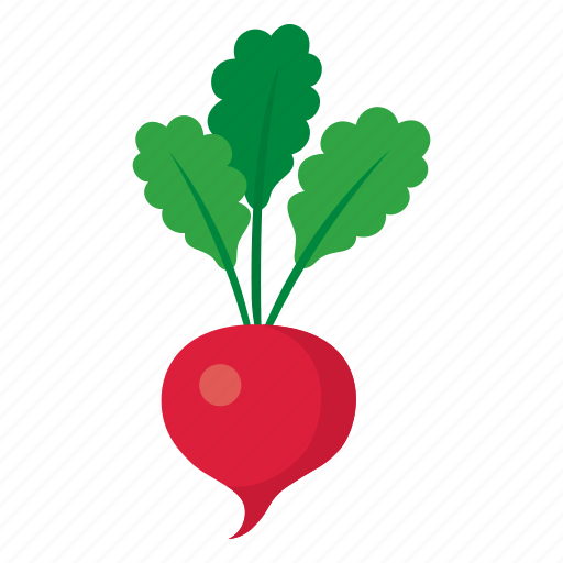 cook, dish, food, kitchen, radish, vegetable, veggie icon