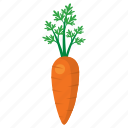 carrot, cook, food, kitchen, orange, vegetable, veggie icon