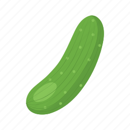 cook, cucumber, food, green, pickles, vegetable, veggie icon