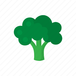 brocolli, cook, dish, food, green, vegetable, veggie icon