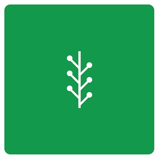 newvine icon