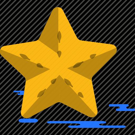 star, summer icon