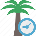 clock, palmtree, travel, tree, tropical, vacation icon