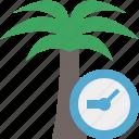 clock, palmtree, travel, tree, tropical, vacation