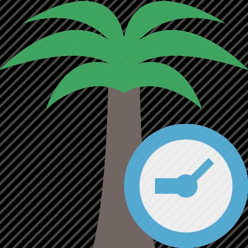 clock, palmtree, travel, tree, tropical, vacation icon