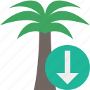 download, palmtree, travel, tree, tropical, vacation icon