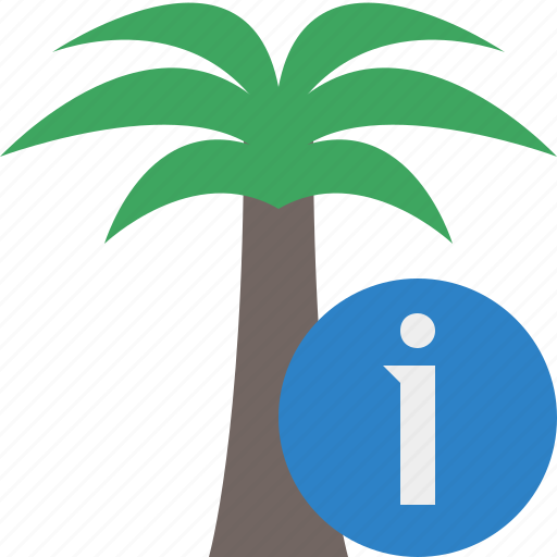 Information, palmtree, travel, tree, tropical, vacation icon - Download on Iconfinder