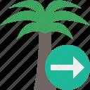 next, palmtree, travel, tree, tropical, vacation