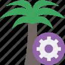 palmtree, settings, travel, tree, tropical, vacation