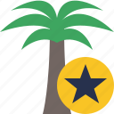 palmtree, star, travel, tree, vacation, tropical