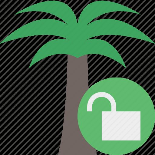 palmtree, travel, tree, tropical, unlock, vacation icon