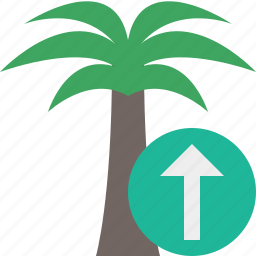 palmtree, travel, tree, tropical, upload, vacation icon