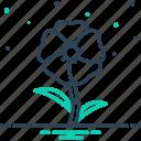 alcea rosea, althaea, blooming, botanical, flower, hollyhock, malvaceae icon