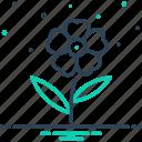 flower, geranium, nerium, oleander, orchid, peony, petunia icon