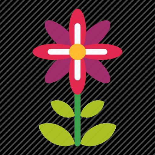 Blossom, flower, nature, plant, spring, summer icon - Download on Iconfinder